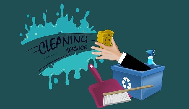 čištění služby